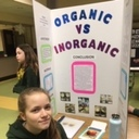 Science Fair Projects photo album thumbnail 21